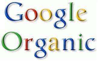 Penjelasan Google Organik