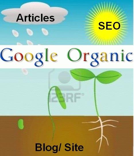 Sekadar Gambaran Google Organik 123rtf.com