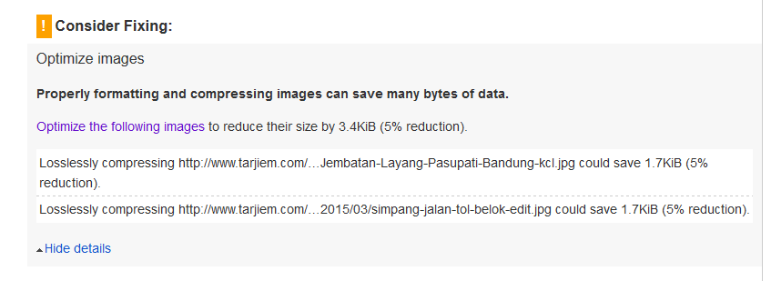 Info Gambar Losslessly Compressing di Google PageSpeed Insights