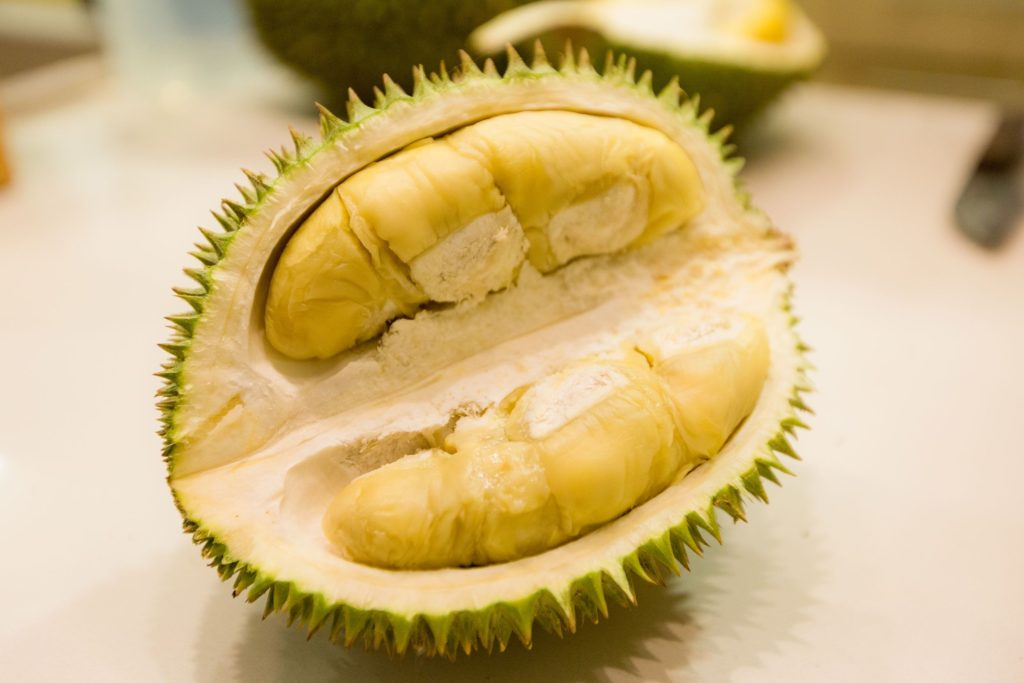Buah Durian (duriangarden dot org)