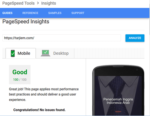 Google Pagespeed Insights 100/100 WordPress Tarjiem Mobile/Seluler