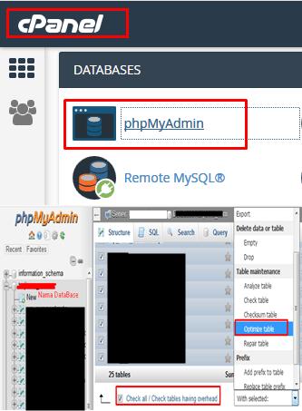 Cara Optimasi Database WordPress cPanel phpMyAdmin Tabel MySql