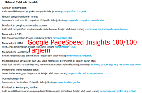 Eror Google-Pagespeed Insights 100/100 WordPress Tarjiem Bahasa Indonesia