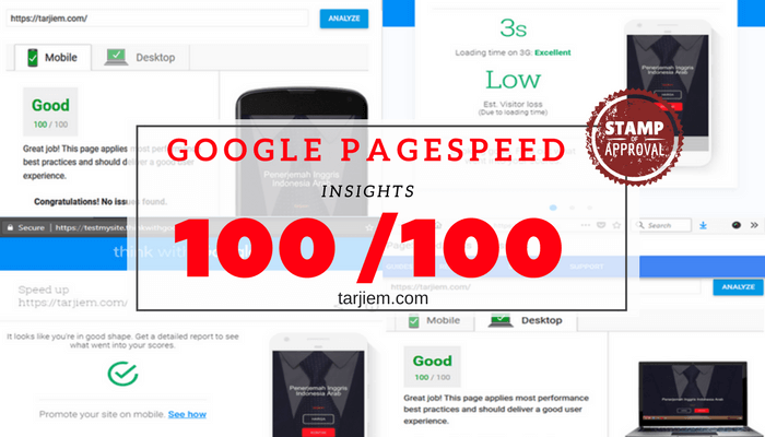 Google PageSpeed Insights 100/100 WordPress 5 Ribu Kata